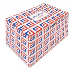 Opalina Extra 100 Biglietti da Visita Grandi - 1 Box