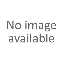 Clipper Large Fantasia ANIMAL STORY 10 - Box da 48 Accendini